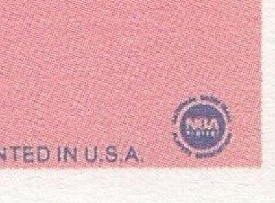 jordan-nba-logo-fake